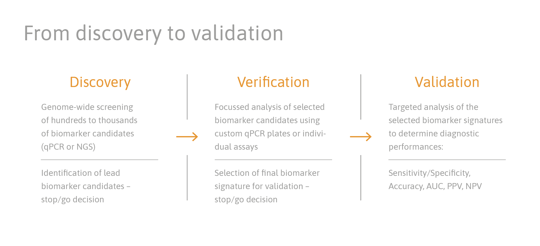 TAmiRNA_service _discovery_validation